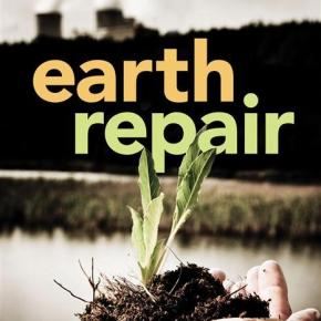 Book Review:  Earth Repair by Leila Darwish