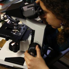 Soil Biology with Maria Farinacci- A Filmed Lecture from the 2012 Radical MycologyConvergence