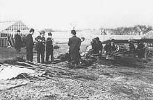 Fig. 5 USDA plant pathologists and entomologists inspecting the first set of Japanese cherry trees that were found to be infected with exotic fungi and insects (8)