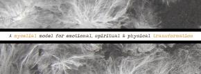 Personal Healing through MycelialGrowth