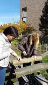 Photos from Tess Burzynski's log cultivation workshop at Wayne State University.